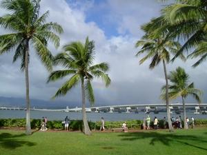 真珠湾付近